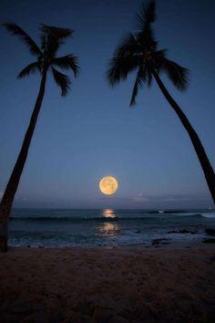 Hawaii Super Moon, by Robin Boume.