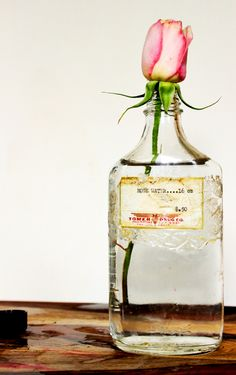 Benefits of Rosewater and How to Make it at Home