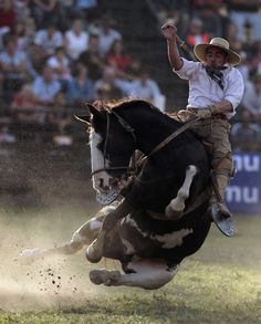 Gaucho at rodeo in Uruguay