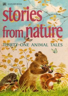 Stories from Nature - Thirty-one Animal Tales by Jane Werner Watson, illustrated by Gerda Muller. Autumn Illustration, Kids Story Books, Animal Books, Vintage Children's Books, Bedtime Stories, Thirty One, Book Collection, Book Design, Book Worms