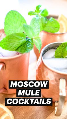 Moscow Mule Variations, Moscow Mule Recipe, Eat Pretty, Ginger Beer, Recipe Search, Strawberry Recipes, Vegan Recipes Easy, Summer Drinks, Eating Well