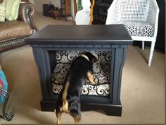 Simon Barker Butt!  He's not so sure about the new bed! Bed made from an old end table.