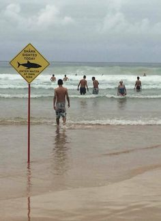 32 Epic Beach Fails, Embarrassing And Just Weird Moments That Once Seen Cannot Be Unseen! Epic Fail Pictures, Best Funny Pictures, Funny Photos, Random Pictures, Beach Signs Wooden, Manly Beach, S Pic, Beach Pictures, Funny Images