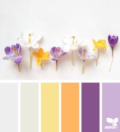 Flora Hues via @designseeds ❤ =^..^= ❤