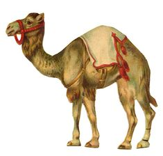 Vintage Graphic - Circus Camel - The Graphics Fairy