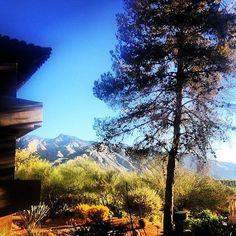 Morning Hike   The Westin La Paloma Resort & Spa