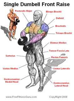 single dumbell front raise - Getting it right when Lifting is so very important to avoid chronic innjury