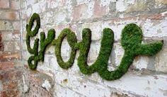 DIY moss graffiti