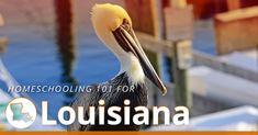 Louisiana Homeschool Laws | HSLDA