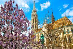 https://flic.kr/p/wqNjJ1 | Budapest Hungary in Spring | Matthias Church Budapest in Spring