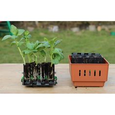 The Urban Farmer er for dig, der vil dyrke dine egne grøntsager på den minimale plads, der findes i byen.