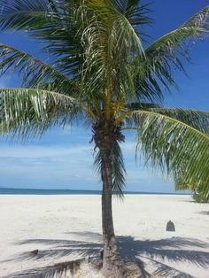 All it needs is you #FSLangkawi