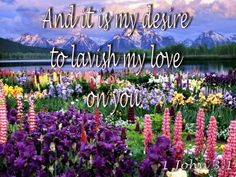 And it is my desire to lavish my love on you. Father's Love Letter, John 3, Fathers, Lettering, Plants, Beautiful, Dads, Parents, Drawing Letters