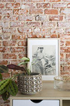 """Un elemento clave a la hora de decorar es la vegetación y WEST es un macetero cerámico ideal para plantas de porte medio o pequeñas plantas colgantes. Conseguirás el efecto """"wow"""" cuando lo coloques encima de un aparador o mueble de TV y veas el resultado. Tiene un relieve muy especial con bordes dorados y que hace que sea decorativo aunque no tenga flores. Su color gris consigue que sea un modelo discreto y encaje con cualquier tipo de decoración. #macetero #pot #rderoom #maranta Planter Pots, Frame, Design, Home Decor, Enamels, Grey Dining Rooms, Gray Fabric, Hanging Plants, Tv Unit Furniture"""