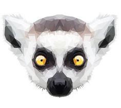 lemur illustration - Google Search