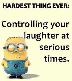 Here are few insanely funny and hilarious minions memes, you will surely love them. Feel free to share best ones with your friends ALSO READ: Most 16 Funny Pics And Memes OF The Day ALSO READ: Top 18 passive aggressive meme Funny Minion Pictures, Funny Minion Memes, Funny School Jokes, Minions Quotes, Minions Fans, Despicable Me Memes, Minions Friends, Minion Humor, Funny Photos