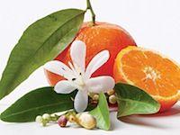 Makea mandariini Hedelmiä & sitrusta Mehukas mandariini ja appelsiini kohtaavat tässä leikkisässä tuoksussa, jossa on ripaus vaniljaa. Makean kiusoitteleva tuoksu, joka vie mukanaan.