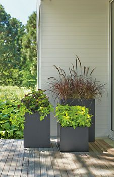 Love these planters!!!  Steel Square Planters - Planters - Accessories - Room & Board