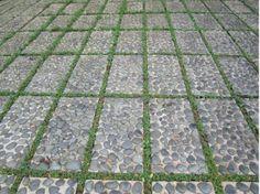 Quoi quand dise pinterest ce lien n'est pas douteux c'est mon site:  jardinpiscine.com