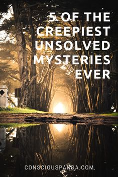 unsolved mysteries bizarre stories that stumped us all what happened where did they go true police stories book 1