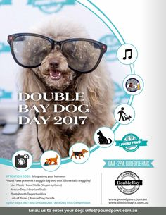 Guide Dogs Australia Pawgust August 2019 Australian Dog Lover Guide Dog Dog Organization Dogs Day Out