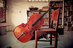 My cello #cello #pearl #river #china #instrument #wood #strings #bass #sound #jakarta #indonesia #books #library #chair