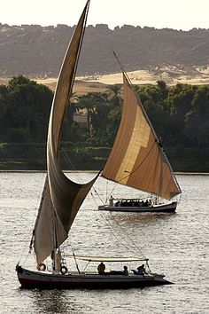 Feluccas, traditional sailing boats on the river Nile, near Aswan, Egypt, Africa
