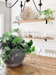 Concrete Pot Centerpiece On A Budget | Bless This Nest Farmhouse Table Decor, Farmhouse Style Decorating, Dining Room Inspiration, Home Decor Inspiration, Decor Ideas, Concrete Pots, Affordable Home Decor, Cool Diy Projects, Dining Room Design