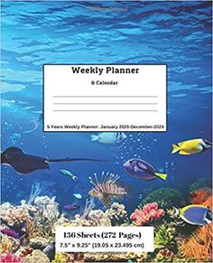 Amazon.com: Weekly Planner & Calendar: 5 Years Planner: January 2020-December-2024 (9781696568647): Ricky Lee: Books