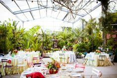 A colorful garden reception