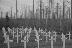Suomalaisten kenttähautausmaa Kollaa