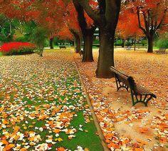 Autumn in Gramado