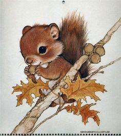 Forest Friends by Ruth Moorhead Cute Animal Drawings, Cute Drawings, Arte Indie, Baby Animals, Cute Animals, Squirrel Art, Squirrel Tattoo, Forest Friends, Cute Illustration