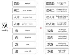 chinese words beginning with 双