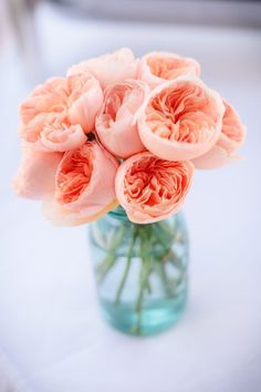 This is a pretty good representation of the color of a juliet garden rose. Coral Wedding Flowers, Peach Flowers, Love Flowers, Wedding Colors, Beautiful Flowers, Coral Wedding Centerpieces, Pink Roses, Juliet Garden Rose, Garden Roses