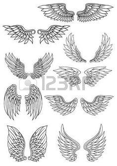 Conjunto de alas heráldicas contorno en negro y blanco con detalles de plumas para su uso en la heráldica y la religión de diseño