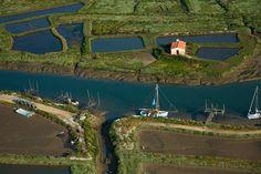 Orivol - Marais de l'embouchure de la Seudre - La Tremblade 17390 - Charente Maritime (17) - Poitou Charente