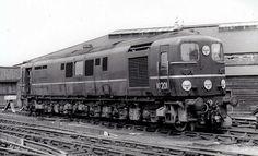 Electric Locomotive, Diesel Locomotive, Steam Locomotive, British Rail, Great Western, Vintage Dog, Steam Engine, Train Tracks, Diesel Engine