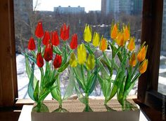 Букетные тюльпаны. История одного заказа.