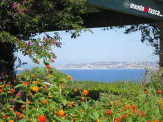 L'#Isola di #Spargi dal #resort Valle dell'Erica