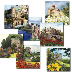 41 best wholesale greeting cards images on pinterest online castles and flowers cards wholesale greetings cards uk suppying independent gift shops m4hsunfo