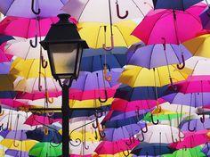 Friday Photo: Umbrella Street, Portugal - Travel Genes