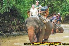 Back to the nature Khao Yai National Park World Heritage Trekking Elephant & Ox-cart riding