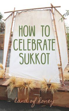 How To Celebrate Sukkot | Land of Honey