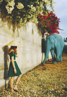 Blue elephant and Temple Dungarpur, Rajasthan, India. Photo by Tim Walker, 1999