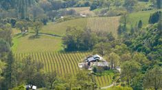 Historic Murphys Top View -- Ironstone Vineyards
