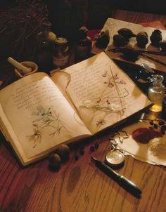 Creating a Materia Medica (Herbal Notebook)  (Sabrina's Witchy Wonderland) / Ex Libris <3