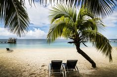Roatan Private Tours and Excursions offer exciting and unique tours with Fishing Charters, Famous Suspension Bridges and more. Our principal objective is to point out our guests the Island that we all know and love.