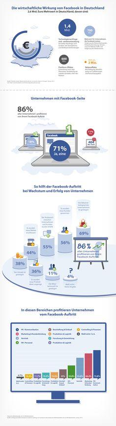 Schöne Infographik zum Erfolg von FB in Deutschland