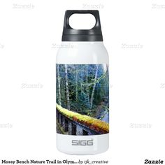 Mossy Bench Nature Trail in Olympic National Park Thermos Water Bottle